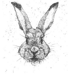 Vintage graphic rabbit print vector