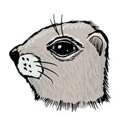 Gopher vector