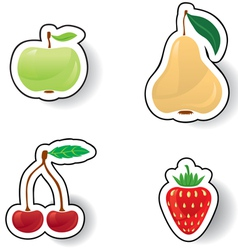 Colorful fruits and berries vector image vector image