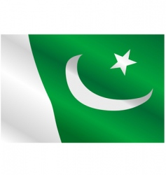 Flag of pakistan vector
