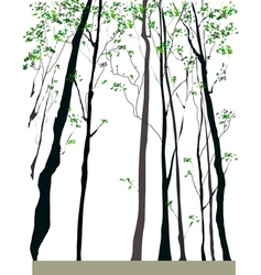 Tree forest vector
