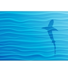 Shark silhouette in blue water vector