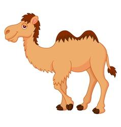 Cute camel cartoon vector