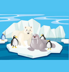 wild animals in the north pole vector image