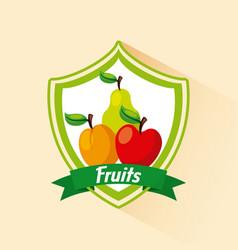 Assorted fruits emblem image vector