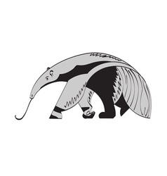 giant anteater vector image