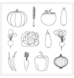 Set linear vegetable icons vector