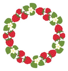 Raspberry wreath vector