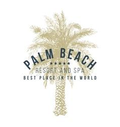 palm beach logo template vector image