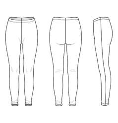 Leggings vector image vector image
