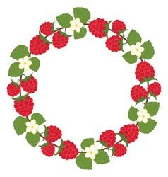 Raspberry Wreath vector image vector image