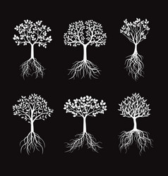 set white trees with leafs and roots vector image vector image