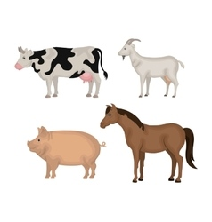 animals farm domestic icon vector image