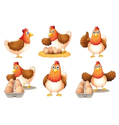 Six hens vector image vector image