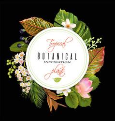 tropial plants banner vector image