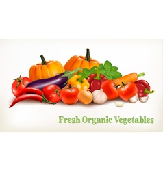 Background With Organic Fresh Vegetables Healthy vector image