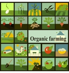 Set of icons organic farming vector