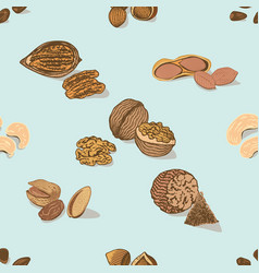 colorful nuts and seeds seamless pattern vector image