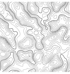 line topographic contour map background seamless vector image