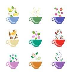 Tea flavors set vector