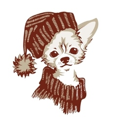 Chihuahua dog - vector