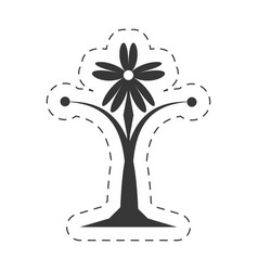 decoration ornament element floral vector image vector image