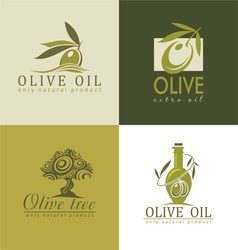 olive and olive oil vector image vector image