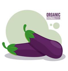 Organic healthy food eggplant nutrition vector