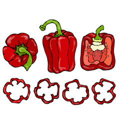 Red bell peper set half of sweet paprika and vector