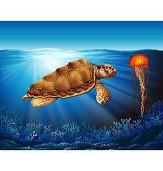 Turtle and jelly fish swimming in the sea vector