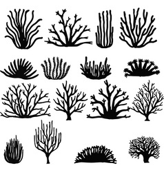 Hand drawn coral vector