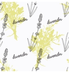 Hand drawn lavender branch and handwritten sign vector