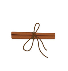 Realistic cinnamon with a rope view from top vector