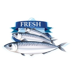 Fresh sardines with text vector
