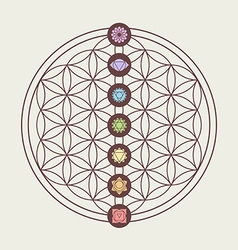 Chakra icons on sacred geometry design vector