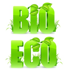 Bio and Eco words vector image vector image