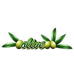 Font design with fresh olives vector image