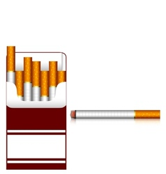Carton of cigarettes vector