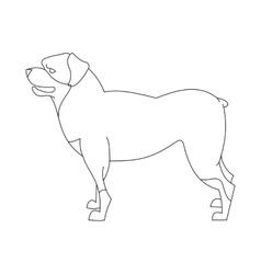 Rottweiler dog linear vector