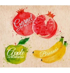 Fruit watercolor watermelon banana pomegranate vector