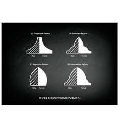 Four types of population pyramids on chalkboard vector