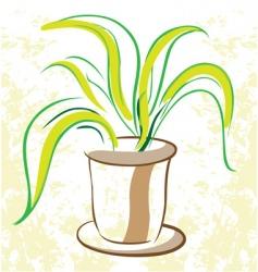 plant in flowerpot vector image vector image