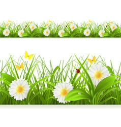 Spring green grass seamless border detailed vector