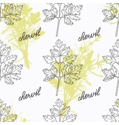 Hand drawn chervil branch and handwritten sign vector