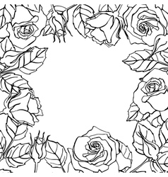 line rose square frame vector image vector image