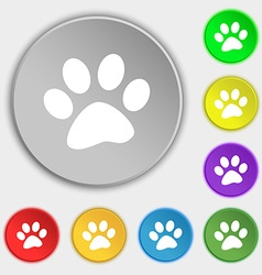 Paw icon sign symbol on eight flat buttons vector