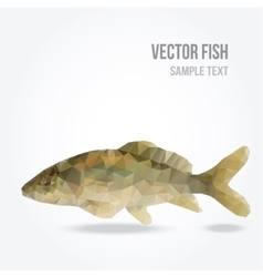 Modern polygon of carp fish vector