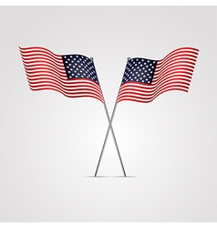 American flag isolated on white background vector
