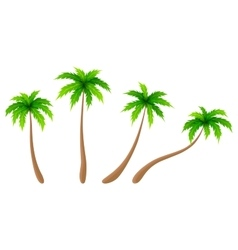 Set of palm trees vector
