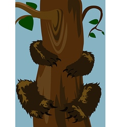 Bear on the tree vector image